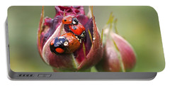 Ladybug Foursome Portable Battery Charger