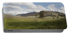 Lamar Valley No. 2 Portable Battery Charger by Belinda Greb