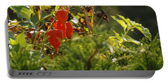 Portable Battery Charger featuring the photograph Lantern Plant by Brenda Brown