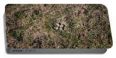 Lapwing Nest Portable Battery Charger