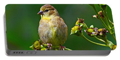Late Summer Finch Portable Battery Charger