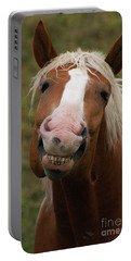 Portable Battery Charger featuring the photograph Laughing Smiling Happy Horse by Stanza Widen