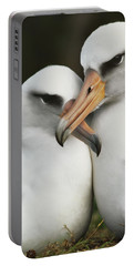 Laysan Albatrosses Courting, Hawaii Portable Battery Charger