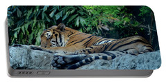 Portable Battery Charger featuring the photograph Lazy Cat by Michelle Meenawong