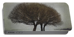 Portable Battery Charger featuring the photograph Leafless Couple by Ari Salmela