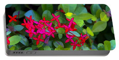Portable Battery Charger featuring the photograph Leafs by Tom Prendergast