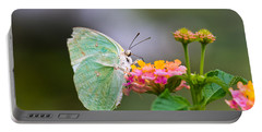Lemon Emigrant Butterfly Portable Battery Charger
