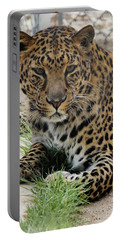 Leopard Lounging 1 Portable Battery Charger