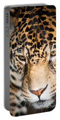 Leopard Resting Portable Battery Charger