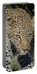 Leopard Stalking Portable Battery Charger