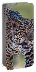 Jaguar Walking Portrait Portable Battery Charger