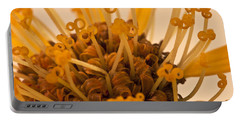 Portable Battery Charger featuring the photograph Leopards Bane Flower Macro by Sandra Foster