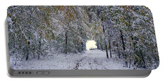 Portable Battery Charger featuring the photograph Let It Snow by Felicia Tica