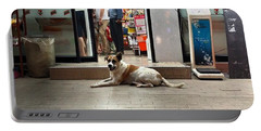Portable Battery Charger featuring the photograph Let Sleeping Dogs Lie Where They May by Mr Photojimsf