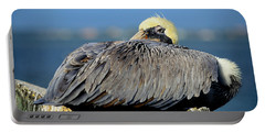 Let Sleeping Pelicans Lie Portable Battery Charger