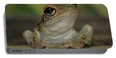 Let's Talk - Cuban Treefrog Portable Battery Charger