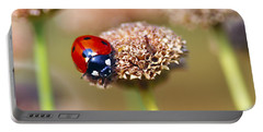 Lil Ladybug 2 Portable Battery Charger by Sharon Talson