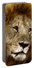 Lion 01 Portable Battery Charger by Wally Hampton