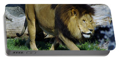 Lion 1 Portable Battery Charger