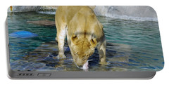 Lion 3 Portable Battery Charger