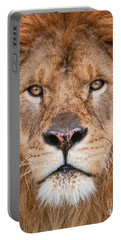 Portable Battery Charger featuring the photograph Lion Close Up by Jerry Fornarotto