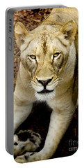 Lion-wildlife Portable Battery Charger