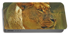Lioness 2012 Portable Battery Charger