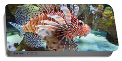 Lionfish Portable Battery Charger by Sandi OReilly