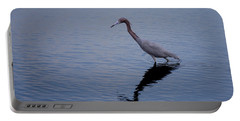 Portable Battery Charger featuring the photograph Little Blue Heron On The Hunt by John M Bailey