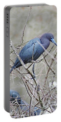 Little Blue Lake Martin Louisiana Portable Battery Charger