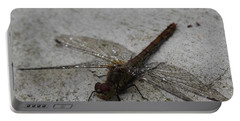 Little Dragonfly Portable Battery Charger