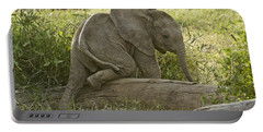 Little Elephant Big Log Portable Battery Charger