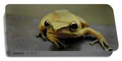 Little Frog Portable Battery Charger by Michelle Meenawong