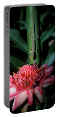Lizard On Stalk Above Wax Lily Portable Battery Charger