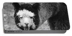 Llama Portable Battery Charger