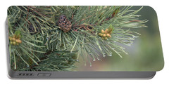 Lodge Pole Pine In The Fog Portable Battery Charger
