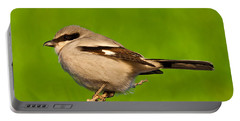 Loggerhead Shrike Portable Battery Charger