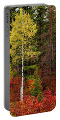 Lone Aspen In Fall Portable Battery Charger by Chad Dutson