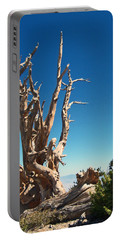Portable Battery Charger featuring the photograph Lone Bristlecone by Alan Socolik
