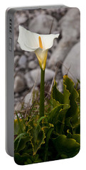 Lone Calla Lily Portable Battery Charger by Melinda Ledsome