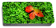 Portable Battery Charger featuring the photograph Lonely Leaf by Charlie and Norma Brock
