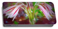 Portable Battery Charger featuring the photograph Lonely Lilly by Debra Forand