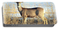 Portable Battery Charger featuring the photograph Lonesome Doe Sunset by Barbara Chichester
