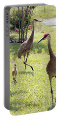 Sandhill Crane Photographs Portable Battery Chargers