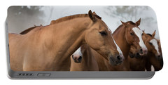 Los Caballos De La Estancia Portable Battery Charger