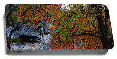 Fall Foliage At Lost Maples State Natural Area  Portable Battery Charger