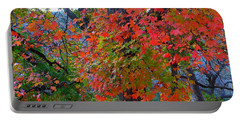 Lost Maples Fall Foliage Portable Battery Charger