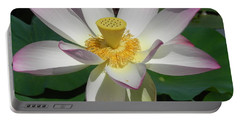 Portable Battery Charger featuring the photograph Lotus Flower by Chrisann Ellis