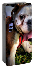 Portable Battery Charger featuring the photograph Loubird by Robert McCubbin