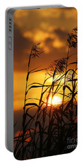 Portable Battery Charger featuring the photograph Louisiana Marsh Sunset by Luana K Perez